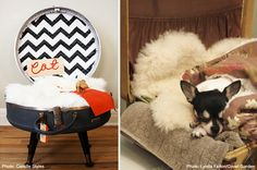 vintage suitcase pet bed diy - Okay now I need to find a vintage suitcase.