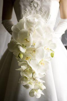 胡蝶蘭 ブーケ - Google 検索 Orchid Bouquet Wedding, Cascading Wedding Bouquets, Calla Lily Bouquet, Sunflower Bouquets, Spring Wedding Flowers, Bride Bouquets, Floral Bouquets, Floral Wedding, Wedding Hands