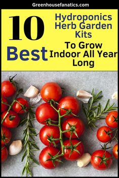 10 Best Indoor Garden Kits; For northern gardeners, harsh winters and better quality indoorgardening systems have allowedGreenhouse Fanaticsto move their garden activities indoors during long winters. #gardening #garden  #gardendesign #gardenideas #gardeningtips #greenhouse #greenhouseideas #greenhousediy #greenhouseplans #greenhousedesigndiy