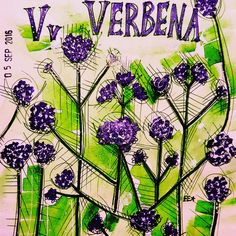 V is for Verbena #afloweraday #illustration #nature #flowersonpinterest