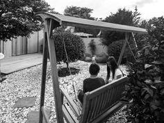 Tal Nisim - photography