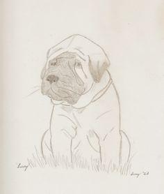 Mastiff Puppy Portrait by SunnyArts.deviantart.com on @deviantART
