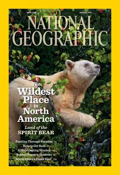 The Wildest Place in North America | Land of the Spirit Bear | NatGeo's Great Bear Rainforest edition, Aug 2011