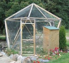 how to build a peacock cage