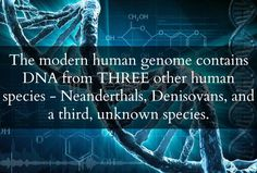 Scientists Just Announced That The Human Genome Contains DNA From An Unknown Species | Awakening Daily