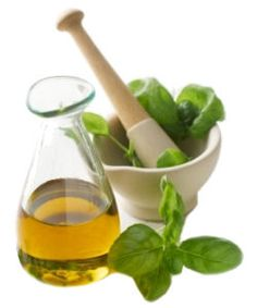 Learn about the magical health benefits of oil of oregano. Oregano oil is an effective acne treatment, and can be used to treat candida and many other infections.