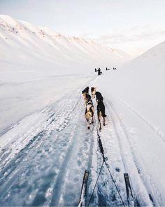 ^~ Somewhere in Alaska~~!