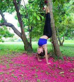 """@salsolysudor on Instagram: """"No te rindas, aun estas a tiempo  de alcanzar y comenzar de nuevo, aceptar tus sombras, enterrar…"""" yoga pose: hollowback handstand"""