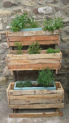 My new rustic herb garden