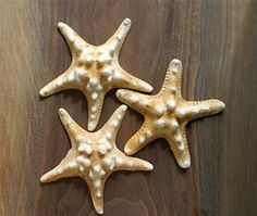 White Chocolate Candy Starfish Andie's Specialty Sweets
