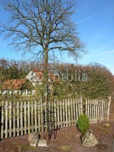 Lattenzaun aus Holz eines Bauernhauses in Lipperreihe bei Bielefeld in Ostwestfalen-Lippe