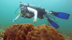 Привет, скъпи приятели! Преди време Скот Шрьодер губи двата си крака и дясната си ръка при бомбен взрив в Афганистан. Въпреки това той не спира да се бори и да обича живота! Любимото му занимание е да се гмурка. Скот не се страхува от морските дълбини и скача смело напред. Какво мислите за нестандартното му хоби?