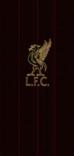 Lfc Wallpaper, Liverpool Fc Wallpaper, Liverpool Wallpapers, Iphone Wallpaper, Liverpool Premier League, Premier League Champions, Liverpool Football Club, Liverpool Anfield, Photo Quality