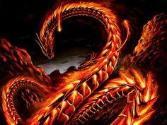 Fire Dragon Wallpaper High Quality Resolution ~ Monodomo Fire snake Fire dragon Dragon pictures
