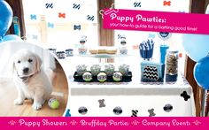 Get Party Trained: How to Throw a Puppy Party #PuppyShower #PoochPawty #DogBirthdayParty