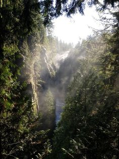 Morning rays on the Capilano River British Columbia Canada [OC] landscape Nature Photos Beautiful Landscape Photography, Beautiful Photos Of Nature, Woods Photography, Nature Photos, Beautiful Landscapes, Beautiful Images, Seymour, Vancouver, Belle Beauty And The Beast