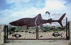 whale shark gate