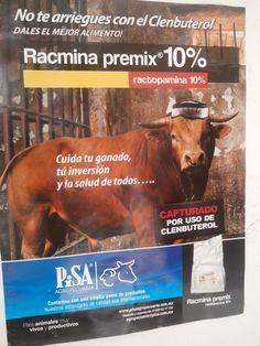 Evita usar clenbuterol para la engorda de ganado...esta penado.