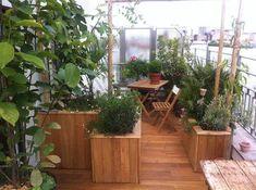 miniature Une terrasse plein Sud qui s'ouvre sur les toits de Paris, Paris, Camille Freulet - paysagiste Architecture Jobs, Room Inspiration, Outdoor Gardens, Backyard, Outdoor Structures, Deco, Green, Projects, Balcony Ideas