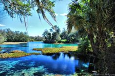 Rainbow River, Dunnellon Florida