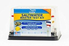 Welcome to saltwater aquarium beginner guide section. The title explains it all. You will learn the basic information you'll need to understand before buying your first aquarium or even before thinking of keeping one.This article will give you a summary of the basic things you will need to understand and then