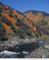 Incredible things to do at Yosemite National Park.