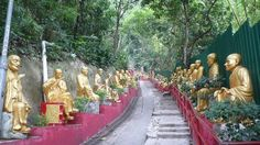 10 thousand Buddhas in Hong Kong--another reason to go back to China :)