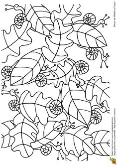 leaves and snails Insect Coloring Pages, Colouring Pages, School Art Projects, Fall Projects, Colouring Sheets For Adults, Hidden Pictures, Autumn Crafts, Autumn Activities, Zentangle Patterns