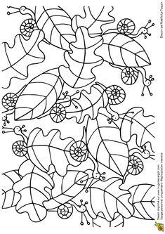 (2014-10) Find 11 snegle