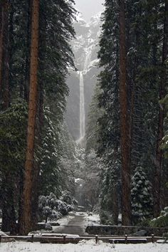 lower fall, waterfalls, winter, yosemit, california, national parks, forest, place, bucket lists