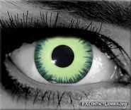 Louis custom SFX vampire contacts - Add a charming, yet chilling vampire stare with these light-green, hypnotizing eyes, which are sure to add a professional, movie quality effect.