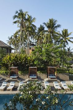 Nirjhara is tucked away in Bali's heartland, surrounded by rice paddies and a tropical forest cut through with waterfalls. Carefully constructed using locally sourced stone, timber, and rattan, the hotel is composed of twenty-five villas, including treehouse suites, and features a spa and a restaurant serving regional specialties in a pavilion overlooking a waterfall. #balihotelsluxury #balihoneymoon #balihotelresortshoneymoons #bestluxuryhotelsbali #baliluxuryresort #balihotelresortsvillas Luxury Hotels Bali, Ubud Bali Hotels, Beach Hotels, Hotels And Resorts, Luxury Travel, Bvlgari Hotel, Best Of Bali, Senses Spa, Bali Honeymoon