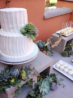 Succulent cake on cinder blocks