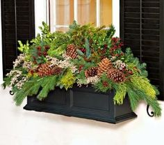 Window boxes or Oh, how Beautiful this would be over the fireplace . all winter not just Christmas ! - Window Box Greens, box - White Flower Farm [ box not included ]
