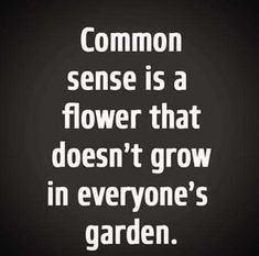 The Business of A.: Quick Tip for Surrogacy Agency Owners- Keep Your Cool Because Common Sense is a Flower that Doesn't Grow in Everyone's Garden! Work Quotes, Wisdom Quotes, True Quotes, Great Quotes, Quotes To Live By, Funny Quotes, Inspirational Quotes, Sarcastic Quotes, Awesome Quotes