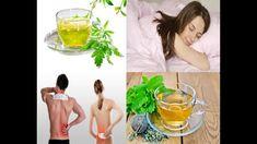 Cuales son Los Beneficios :. Salud Remedios & Mas, Te Diremos Para Que S... Decir No, Japanese Mask, Remedies, Health