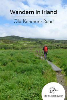 Irland: Tolle Wanderung in Killarney auf der Old Kenmare Road