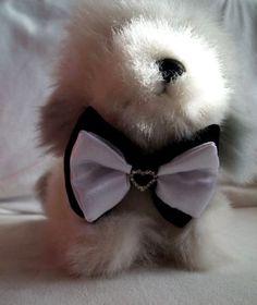 Fekete fehér eb, kutya csokornyakkendő esküvőre, különleges alkalomra