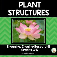 This engaging unit focuses on the function and structure of plants and plant parts.  Chock full of hands on activities.  Aligned to NGSS.  Check out the preview and detailed description by clicking! Science Lessons, Science Fun, Science Ideas, Animal Adaptations, Third Grade Science, Next Generation Science Standards, Structure And Function, Thematic Units, Parts Of A Plant