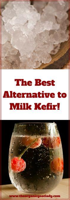 Do your kids hate the taste of Milk Kefir? Water Kefir is a probiotic beverage that they will love! Best Probiotic, Probiotic Foods, Fermented Foods, Kefir Recipes, Real Food Recipes, Healthy Recipes, Water Kefir, Natural Healing, Healthy Drinks