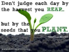 Planting Seeds ☺ | Positive Perspective | Pinterest | Planting Seeds