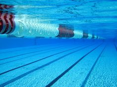 Olympic Swimming Pool Underwater bing image archive: an underwater view of the olympic swimming