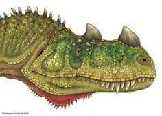 Ceratosaurus Head Study by mmfrankford on deviantART