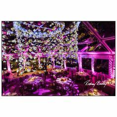 Image result for dc event photographers