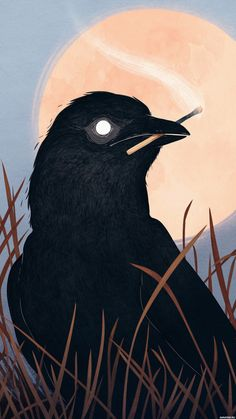 Crow holding a match illustration art Kunst Inspo, Art Inspo, Art And Illustration, Arte Horror, Aesthetic Art, Dark Art, Art Sketches, Tumblr Art Drawings, Pencil Drawings