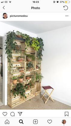 Home Diy Decor - New ideas Room With Plants, House Plants Decor, Natural Home Decor, Diy Home Decor, Plant Shelves, Plant Wall, Houseplants, Indoor Plants, Air Plants