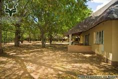 KNP - Letaba - General South Africa, Camping, Park, House Styles, Pictures, Home Decor, Campsite, Photos, Decoration Home