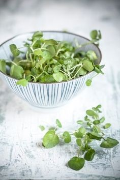 These green leafy cousins of Kale are packed with great amount of nutrients. (Getty Images)