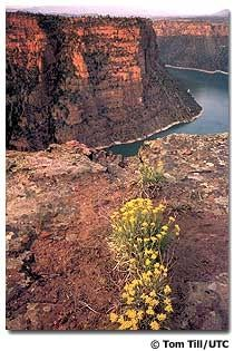 flaming gorge uintas scenic byway from vernal utah to wyoming | http://bestscenicviews.blogspot.com
