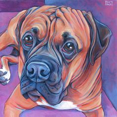 Boxer, Gallery by Breed --Pet Portraits by Bethany